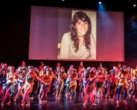SPECTACLE LIVRE 2015 (34)