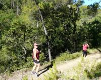 trail 2017 (8)